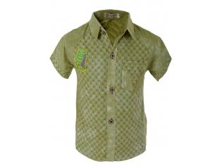 Рубашка мальчик №118 зеленая