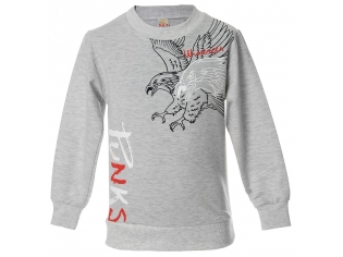 Батник мальчик орел серый
