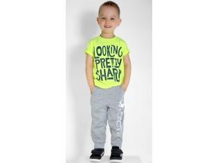 Бриджи-брюки на мальчика серые