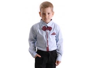 Рубашка мальчик №209 светло-голубая